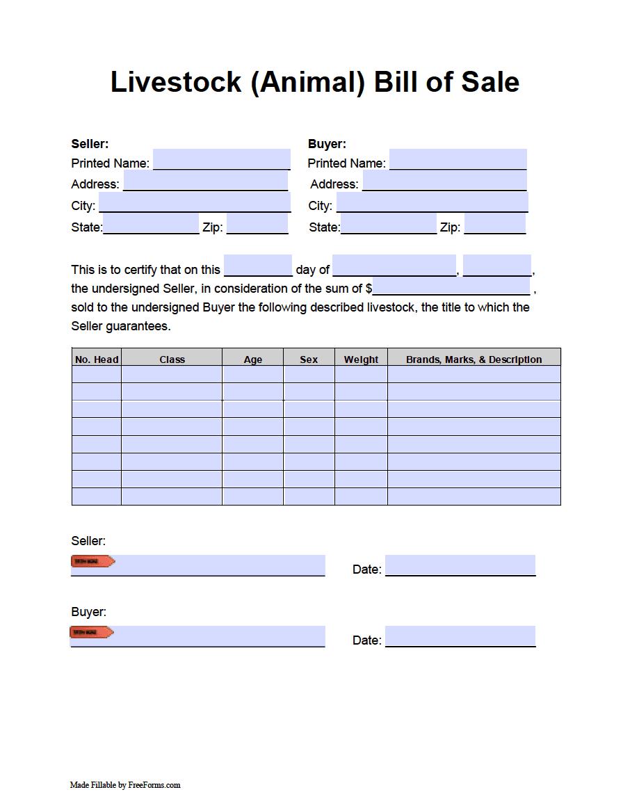 Animal Bill Of Form Pdf